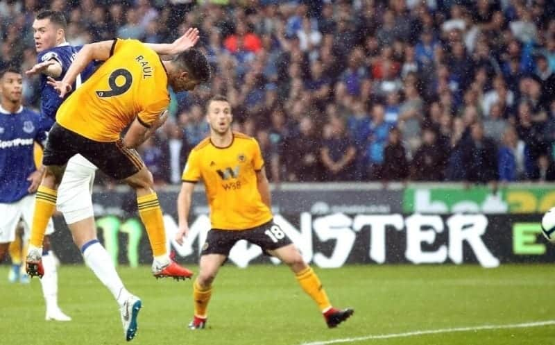 Predictions for the match between Wolverhampton Wanderers and Everton, Premier League 2020